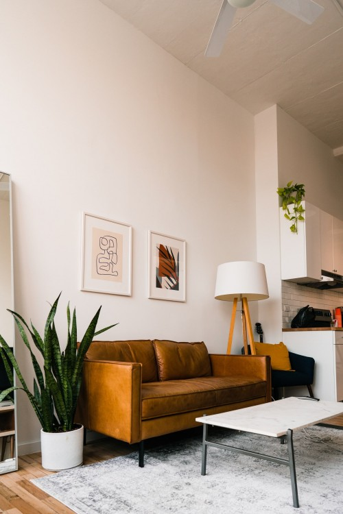 brown-leader-sofa-with-white-table-on-wooden-surface-and-leaf-plant-on-white-pot-near-white-wall-living-room.jpg
