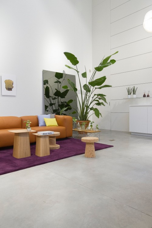 brown-sofa-with-two-small-wooden-table-on-surface-beside-potted-plant-near-white-wall-inside-living-room.jpg