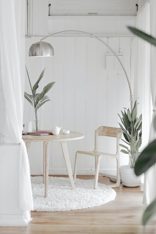 white-wooden-chair-in-front-round-table-on-white-rug-near-white-wall-and-plamt-potted-on-white-pot-inside-room.jpg